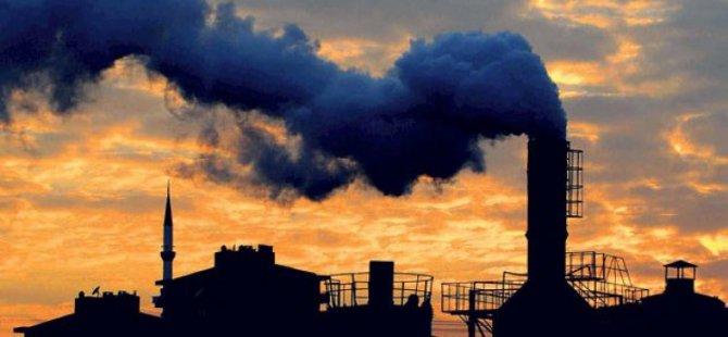 Kirli hava ve genler arasındaki ilişki