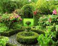 Prens'in bahçesinde cümbüş