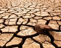 Türkiye'de son 900 yılın en kötü kuraklığı