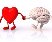 Kalp ile beyin arasında bir köprü bulundu