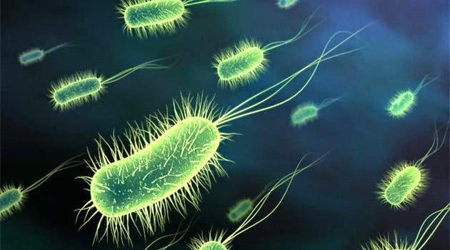 Süper mikroplara dikkat!