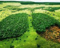 Küresel çevre sorumluluğu