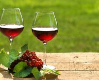 Her gün 1 kadeh şarap içmenin faydaları