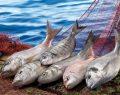 Şimdi sofralarda balık zamanı