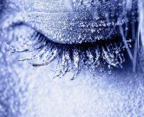 Dondurulup yeniden dirilmek; ölümsüzlük ihtimali