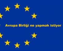"""AB'nin yolu Diyarbakır'dan geçer"""
