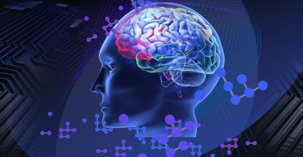 Düşünceleri sözcüklere çeviren beyin implantı