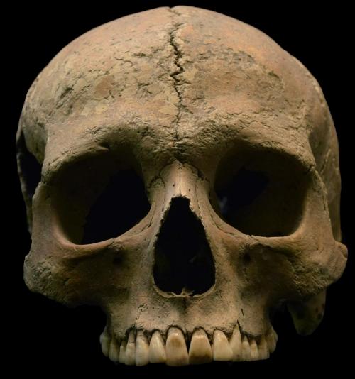 Sıtma 2000 yıldır var