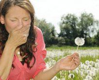 Astım ve alerjide genetik etkiler