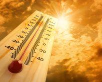 Sıcak hava nedeniyle ölenlerin sayısı artacak