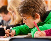 Doğan Cüceloğlu'ndan: Çocukları sınava değil, hayata hazırlamak