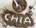 Chia tohumu hakkında bilmeniz gerekenler
