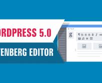 Wordress 5.0 güncellemesinden sonra editörü eski haline getirme