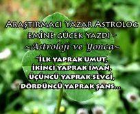 Astroloji ve bitki mitolojileri: Yonca