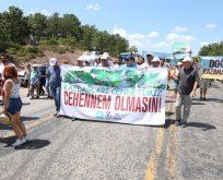 Kaz Dağları'nda yürüyüş: Suyuma ve toprağıma dokunma