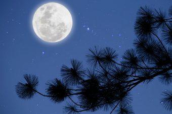 10 Ocak Ay Tutulmasının Burcunuza Etkileri