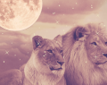 9 Şubat Pazar Aslan Dolunay'ı ve etkileri